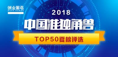 2018中国准独角兽TOP50(夏榜)评选