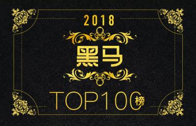 2018黑马TOP100榜:寻找年度最具创新潜力的公司